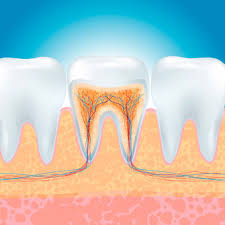 The information does not usually directly identify you, but it can give you a more personalized web experience. Root Canal Cost Recovery Time Infection Duration Of Procedure