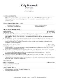 Make Resume Online