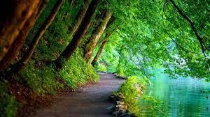 Nature Mac HD Wallpapers - Top Free ...