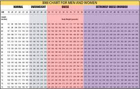 Bmi Chart 1 Ezfit24