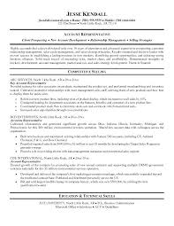 Examples Of Career Summary Gorgeous Career Summary Examples For Resume Amere