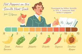 Chilli Hotness Chart Hot Chile Peppers On The Scoville Scale