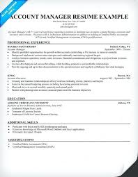 Sample Resume Account Executive Account Executive Sample Resume Technical Account Manager Sample