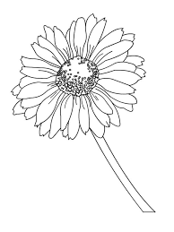 Small Picture Daisy Flower coloring pages Download and print Daisy Flower