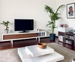 Walnut Furniture Living Room Minimalist Walnut Tv Stand Apartment Pinterest Modern Tv