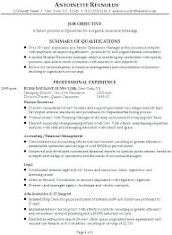 Life Insurance Agent Job Description For Resume Insurance Resume Samples  Agent Sampl on Introduction To An