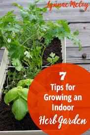 Herb Garden In Kitchen 7 Tips For Growing An Indoor Kitchen Window Herb Garden