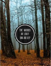The Woods Are Lovely Dark And Deep Robert Frost [40x40] QuotesPorn Amazing Woods Quotes