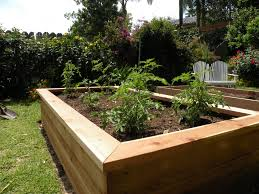 Small Picture Modren Garden Box This Idea And I Know Just Where Put With Design