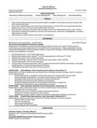 Channel Sales Executve Resume Example LiveCareer