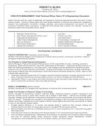 vp engineering resume examples sample customer service resume vp engineering resume examples engineering resume samples to jumpstart in your career finance resume actuary resume