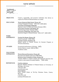 Resume Objective Examples For High School Students It Resume