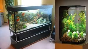furniture fish tanks. Fish Tank Decoration Ideas Cheap Aquarium Youtube For G Large Size Furniture Tanks