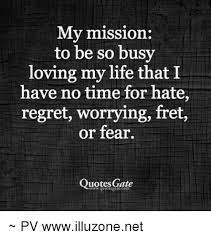Love My Life Quotes Awesome My Mission To Be So Busy Loving My Life That I Have No Time For Hate