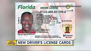 For Driver's Has Design - Florida Sun Cards Sentinel And New Licenses Id