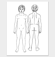 Printable Outline For Male Body Front And Back Body