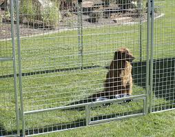 q fence Mesh Fence For Dogs mesh wire extraordinary fencing b q faq jerith  aluminum faq Mesh