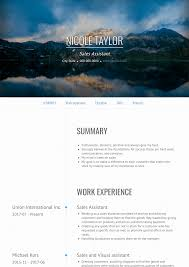 Cv Sales Assistant Sales Assistant Resume Samples And Templates Visualcv