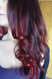 Dark Brown Violet Burgundy Red Ombre