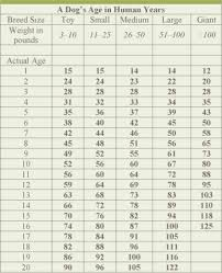 Proheart 6 Dosing Chart Pin By Barbara Jerrell On Tips Dog Ages Dog Age Chart