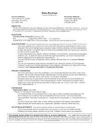 Resume Experience Example Basic Resume Experience Examples Therpgmovie 1