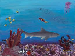 shark painting sea life by maggie morrison