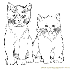 Small Picture Cat Coloring Page 17 Coloring Page Free Cat Coloring Pages