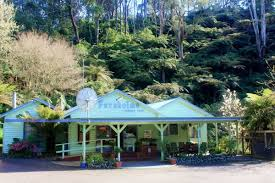 Tarra Valley Caravan Park | Tarra Valley Melbourne Tourism