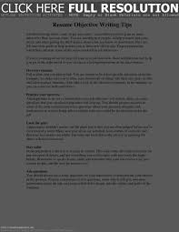 What To Put Resume In For Interview Resume Template