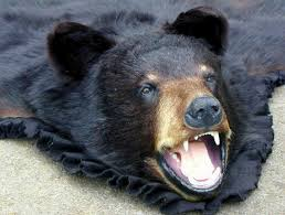black bear rug mounts