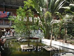 atocha station tropical garden