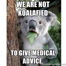 We are not koalafied To give medical advice. - surprised koala ... via Relatably.com