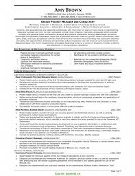 Cover Letter Great Care Manager Cv Project Manger Resume Project