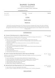 Telephone Sales Representative Resume Samples Resume Examples For Sales