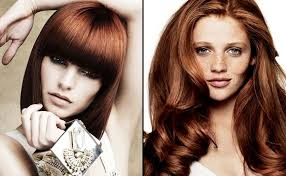 hairstyles color for long hair photo 7