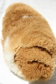 natural wool sheepskin fur rug or seat cover brown white hide w soft fuzzy pile