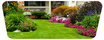 Small Picture Garden Designing services in Dubai