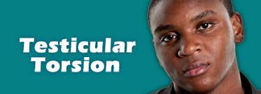 testicular torsion. hot topics testicular torsion d