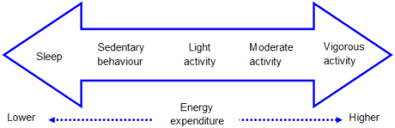 Energy Expenditure Chart For Activity Physical Activity Wikipedia