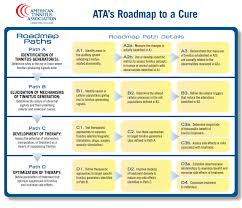 roadmap to a cure  american tinnitus association