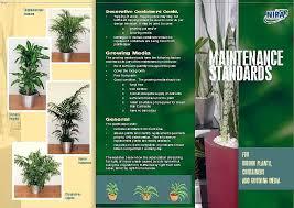 nipa maintenance standards page 1 brisbane office plants