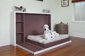 award-winning-Modern-Fold-Out-Pet-Bed
