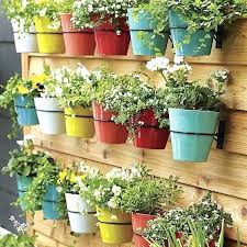 wall flower pot terrarium design wall flower pots indoor wall planter many pot with diffe color