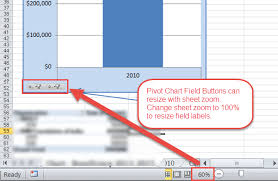 Pivot Chart Field Button Not Displaying All Words Or Text