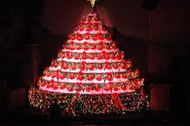 Christmas  Living Christmas Tree Stunning Photo Ideas Knoxville The Living Christmas Tree Knoxville Tn
