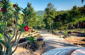 this will be your new favorite spot at the vallarta botanical gardens