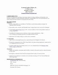 Resume Font Size Canada 2 Unique Guru Essay Writer Analysis Top