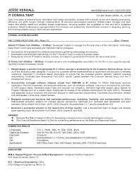 Fine Design It Consultant Resume Consulting Resume Examples