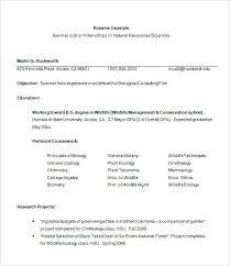 Internship Resume Sample Resume Internship Template Internship
