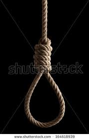 Rope noose with hangman's knot hanging in front of black background.